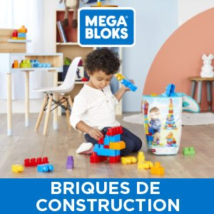 FISHER PRICE Briques de construction