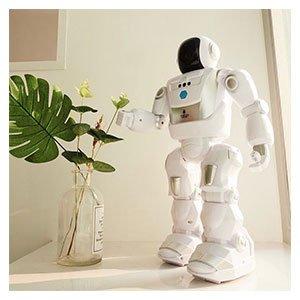 ROBOTS PROGRAMMABLES